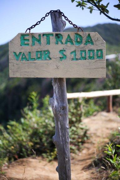 Valdiviablog_141