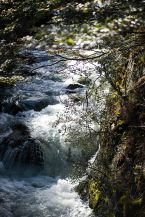 Torres Del Paine_032