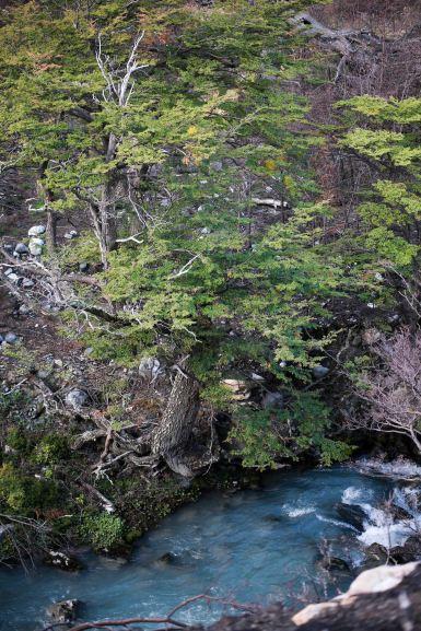 Torres Del Paine_037