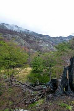 Torres Del Paine_079