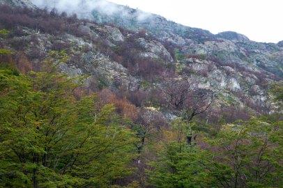 Torres Del Paine_080