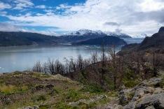 Torres Del Paine_083
