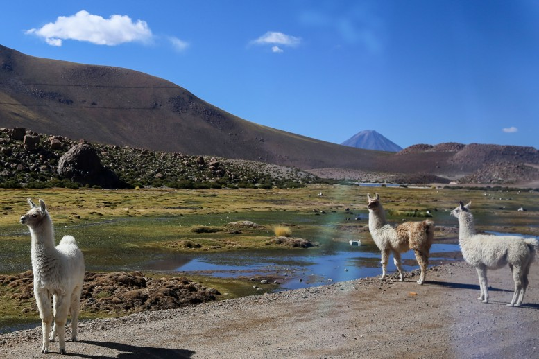 Atacama_083