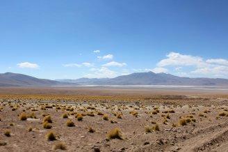 Salt Flat Tour_071