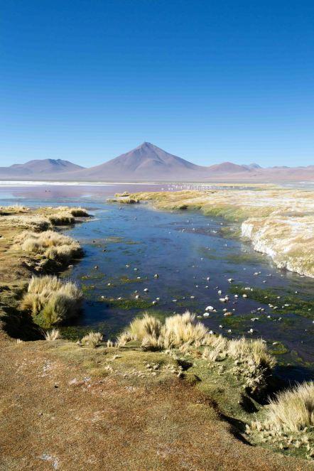 Salt Flat Tour_088