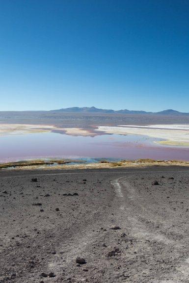 Salt Flat Tour_107