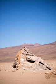 Salt Flat Tour_116