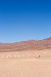 Salt Flat Tour_118