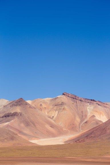 Salt Flat Tour_123