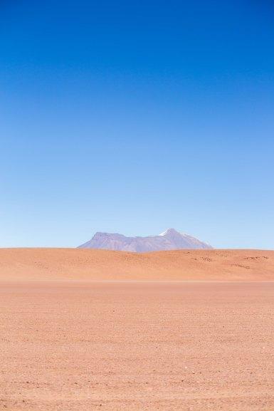 Salt Flat Tour_124