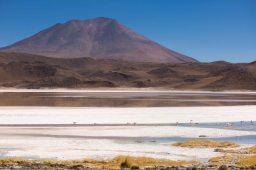 Salt Flat Tour_171