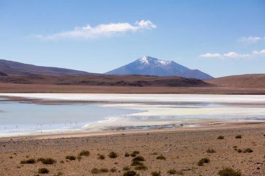 Salt Flat Tour_176