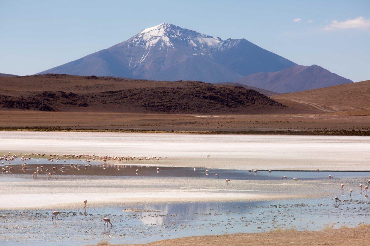 Salt Flat Tour_178
