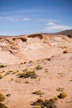 Salt Flat Tour_201