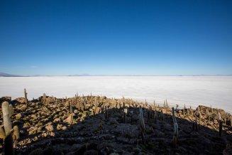 Salt Flat Tour_289