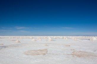 Salt Flat Tour_329