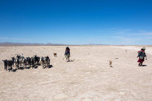 Salt Flat Tour_336