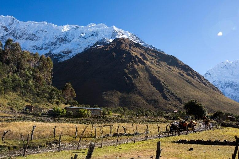 Machu Picchu_002