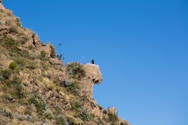 Arequipa & Colca Canyon_020
