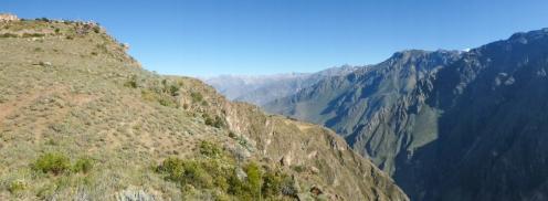 Arequipa & Colca Canyon_024