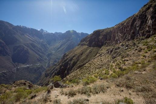 Arequipa & Colca Canyon_039