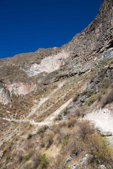 Arequipa & Colca Canyon_046