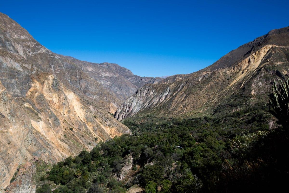 Arequipa & Colca Canyon_050