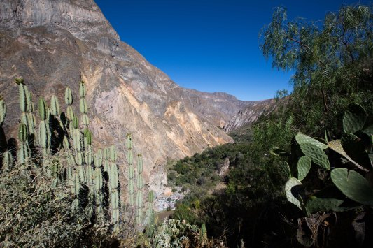 Arequipa & Colca Canyon_052