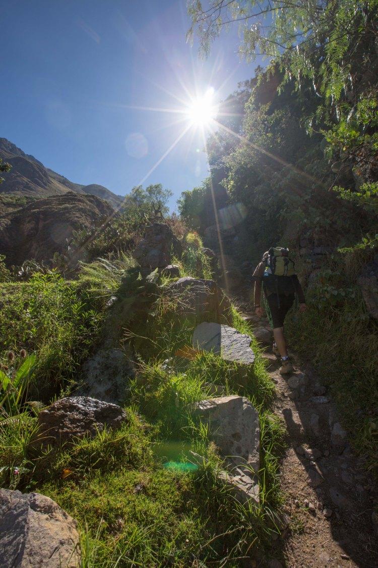 Arequipa & Colca Canyon_053