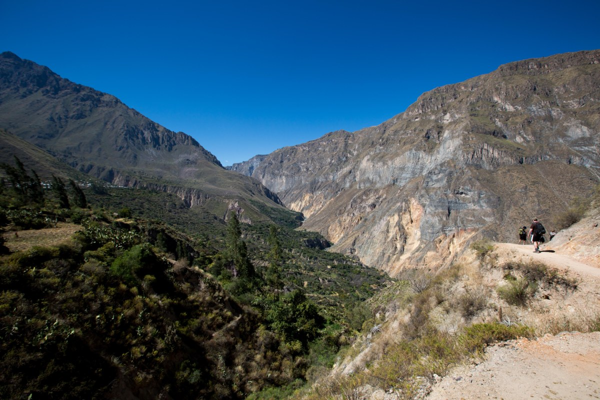 Arequipa & Colca Canyon_059