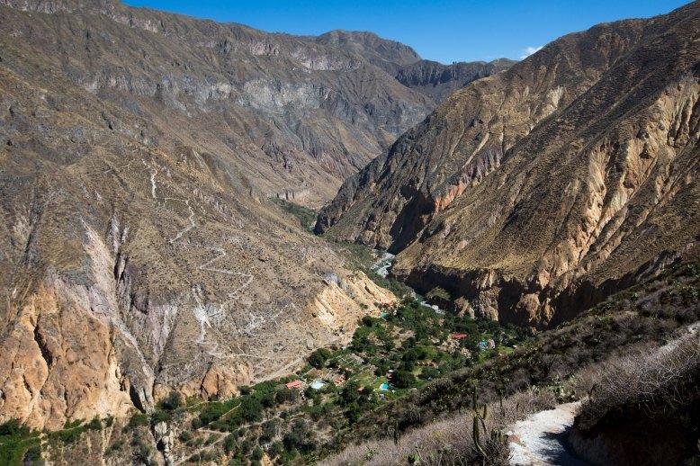 Arequipa & Colca Canyon_061