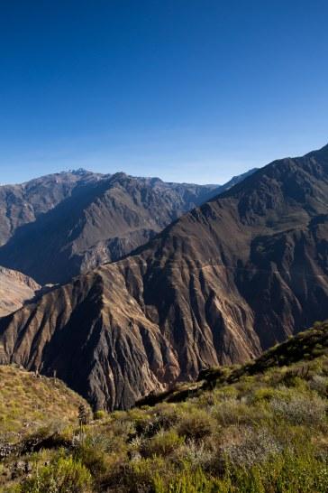 Arequipa & Colca Canyon_090