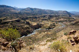 Arequipa & Colca Canyon_099
