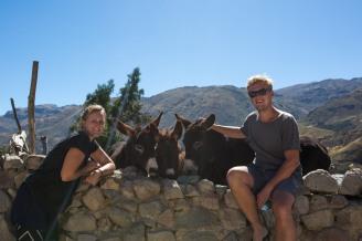 Arequipa & Colca Canyon_111