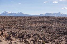 Arequipa & Colca Canyon_121