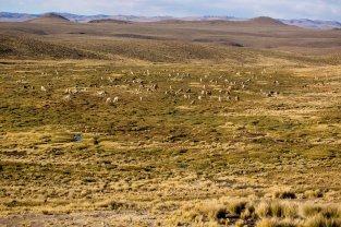 Arequipa & Colca Canyon_125