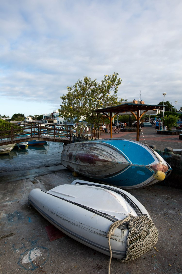 Marina at Santa Cruz, Galapagos
