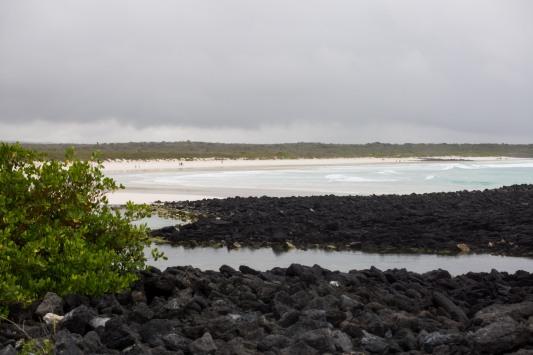 Galapagos_021