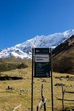 Machu Picchu_021