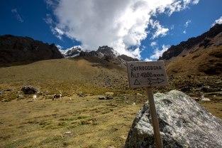 Machu Picchu_053