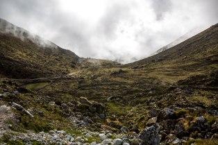 Machu Picchu_081
