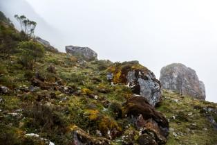 Machu Picchu_094