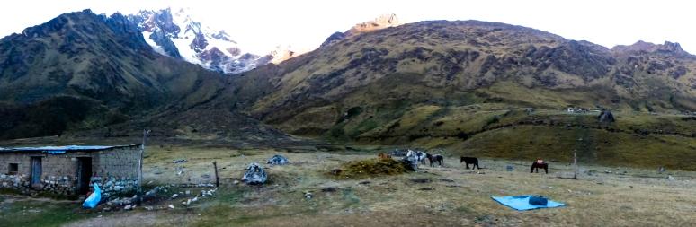 Machu Picchu_110