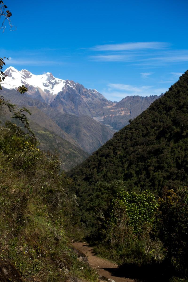 Machu Picchu_120