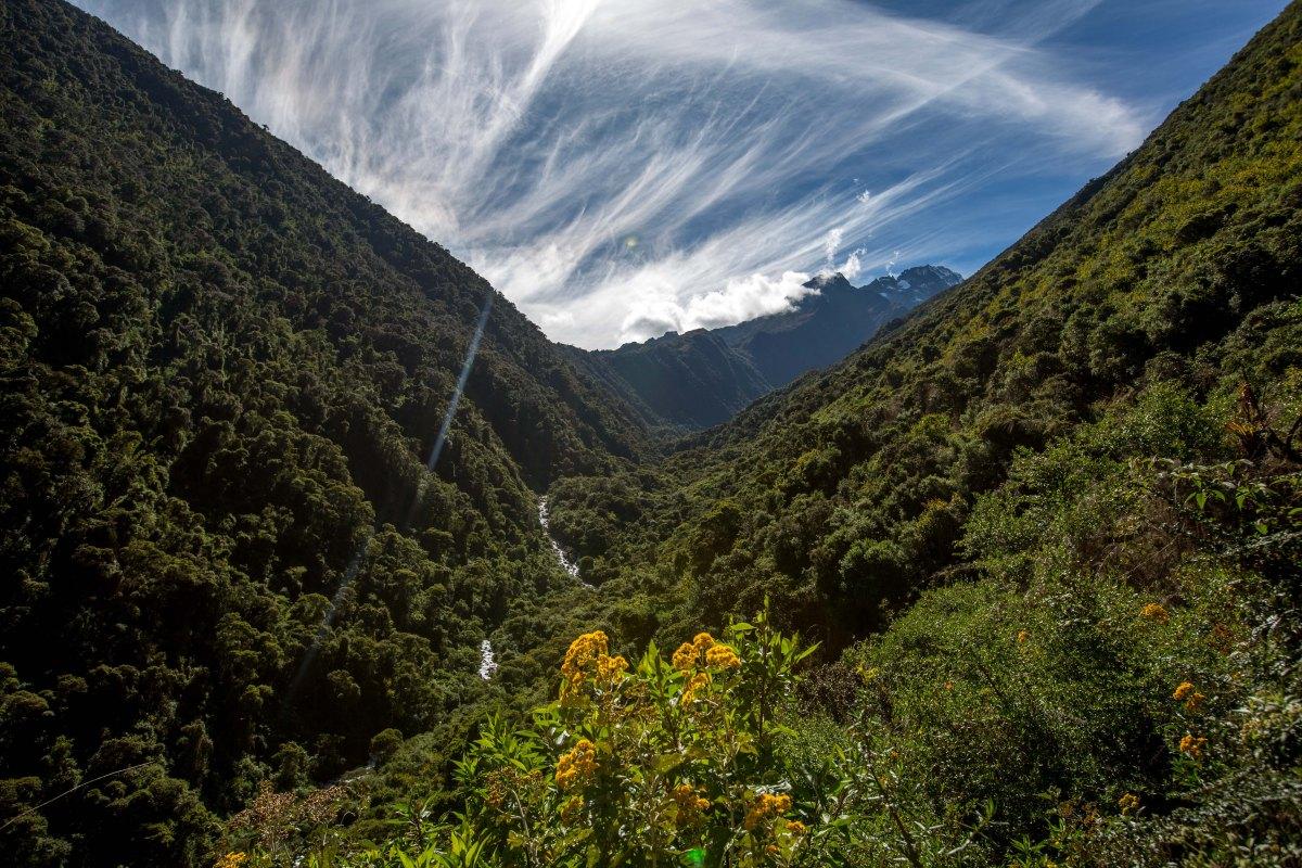 Machu Picchu_129