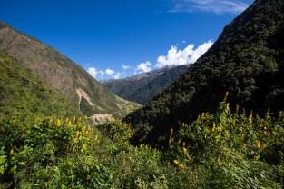 Machu Picchu_131