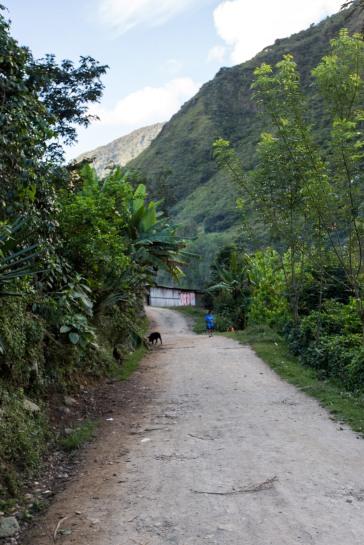 Machu Picchu_148