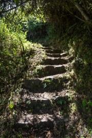 Machu Picchu_153
