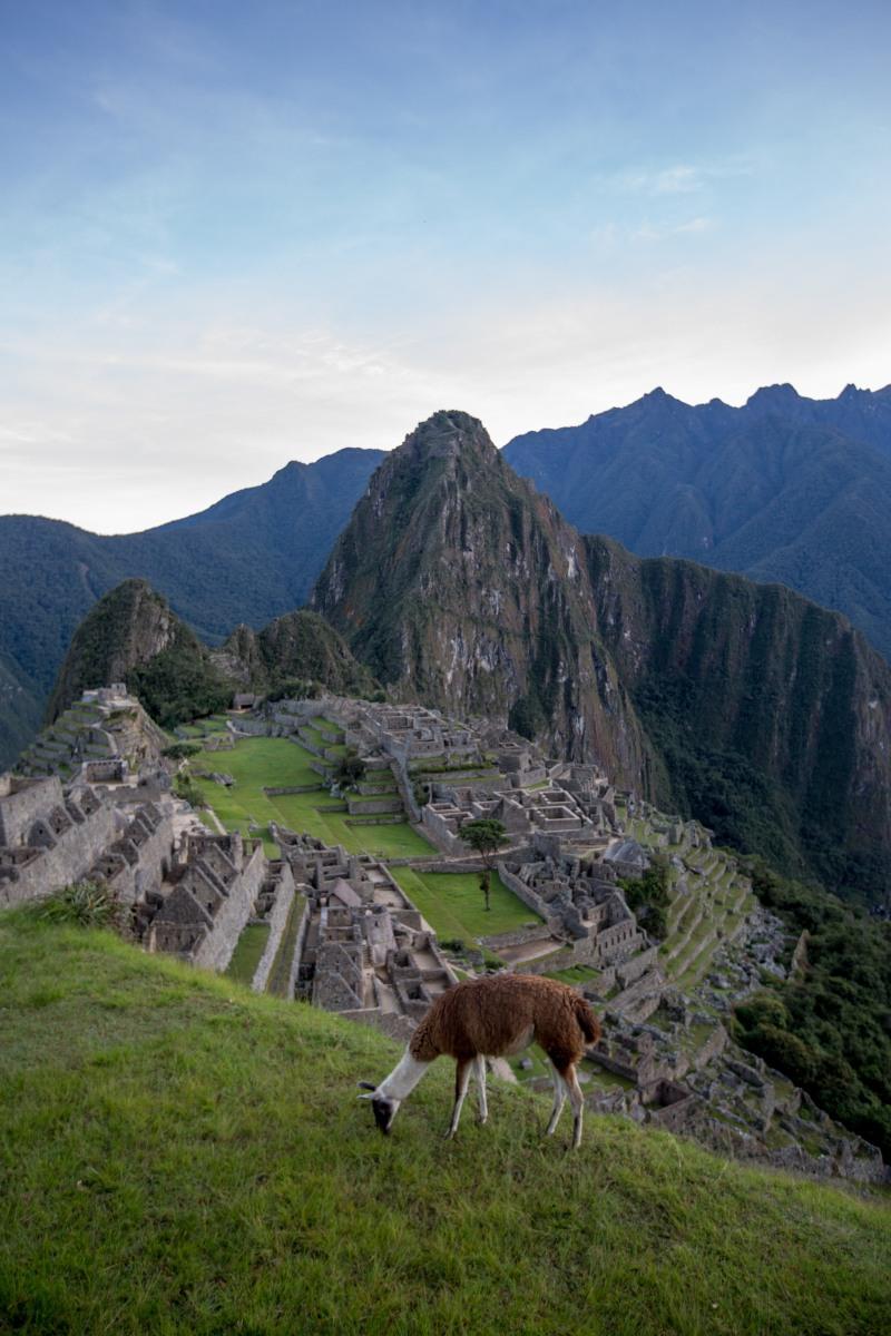Machu Picchu_188