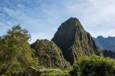 Machu Picchu_256